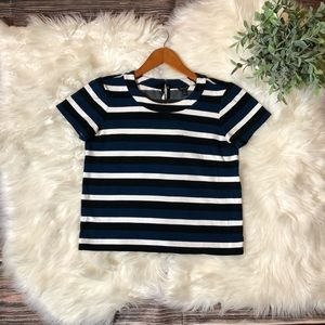 Ann Taylor Striped Boxy Shirt